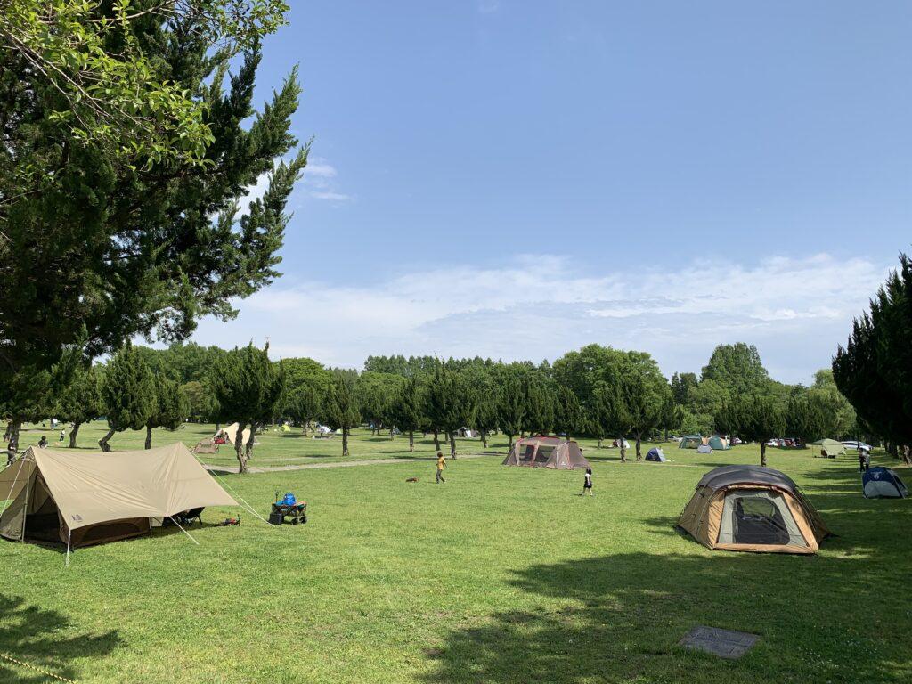 芝生広場テント